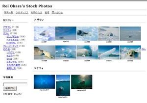 Stockphoto_2