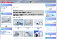 Webshop_2