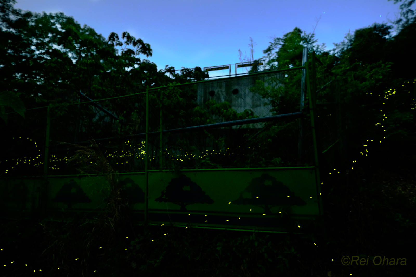 Aioiyama2_2