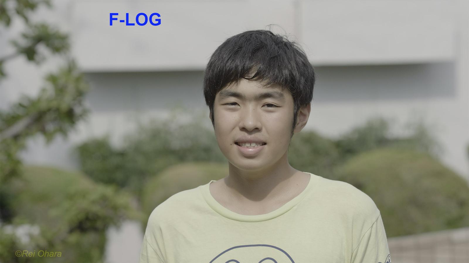 Kaito_log1